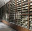 Die osteologische Sammlung; Bild 1