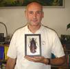 Der Größte Käfer; Bild 0