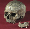 Jungpaläolithische Funde aus Mladec (Lautsch); Bild 0