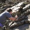 Ammoniten-Massenvorkommen in drei Dimensionen; Bild 1