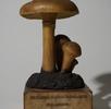 Herstellung der Wachsmodelle von Pilzen; Bild 0