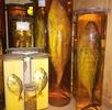 Erfassung in der Fischsammlung; Bild 1