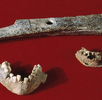 Jungpaläolithische Funde aus der Wachau; Bild 1