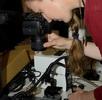 Erfassung in der Molluskensammlung; Bild 3
