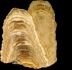 Höhlen sind Erdbebenarchive; Bild 3