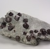 Granat (Almandin); Bild 0