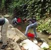 Schwimmkäferforschung und Sammlungstätigkeiten in Thailand; Bild 1