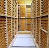 Die Hemiptera-Sammlung; Bild 0