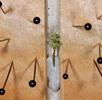Trockenpräparate; Bild 3