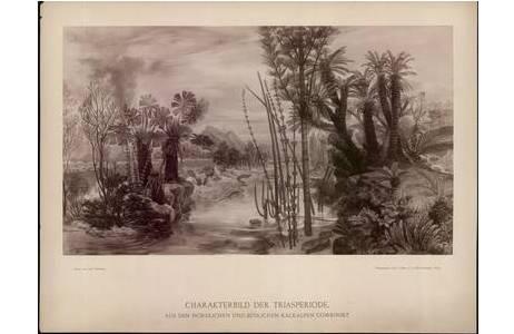 Technik: Silbergelatineabzug, Maler: Josef Hoffmann (1831 - 1904), Fotograf: Josef Löwy (1834 - 1902)