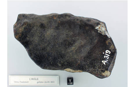 Komplett mit Schmelzkruste überzogenes Einzelstück des Meteoritenschauers von L'Aigle; Foto: L. Ferrière, , NHM Wien