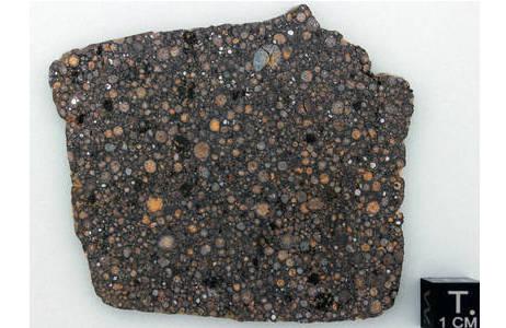 Steinmeteorit NWA 7502; Foto: NHM Wien, L. Ferrière