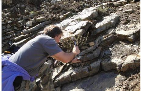 Probennahme in 220 Millionen Jahre alten Kalkbänken bei Asagiyaylabel im Taurus-Gebirge; Foto: NHM Wien