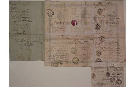 """Rückseite: """"Reisepass"""", Druck und Handschrift, 29.12. 1835 – 03.10. 1843; Foto: NHM Wien"""