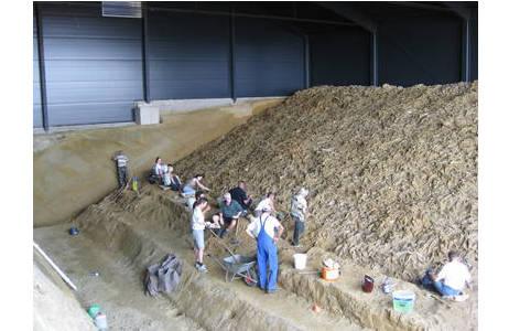 Schnappschuss während der Austerngrabung.  Während die freiwilligen Helfer die Fossilien freilegen, muss der Sand mit Schubkarren abtransportiert werden; Foto: NHM Wien