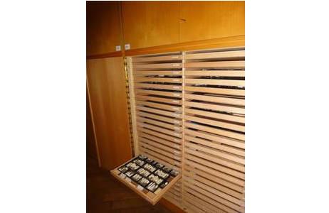 Kasten mit Sammlungsladen aus der Trockensammlung; Foto: NHM Wien, Molluskensammlung