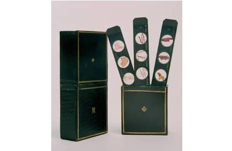 Material: Holz, Glas und pflanzliche Präparate, Hersteller: Kaiser Ferdinand I. (Karl Leopold Joseph Franz Marcellin von Habsburg) und Simon Plößl