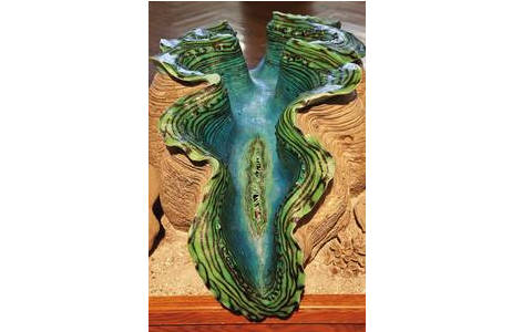 Riesenmuschel (Tridacna gigasin) der Schausammlung - Originalschalenklappen mit Weichkörpernachbildung; Foto: A. Schumacher, NHM Wien