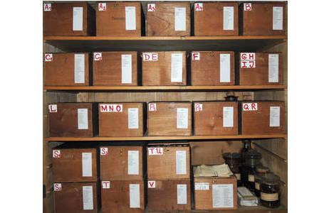 Blick auf die nunmehr sortierten Boxen – diese beinhalten Glasröhrchen mit Pflanzenresten bzw. Milben – der Nalepa Sammlung