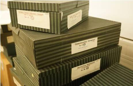 Historische Boxen in denen früher Fotoabzüge aufbewahrt wurden; Foto: NHM Wien, Archiv für Wissenschaftsgeschichte