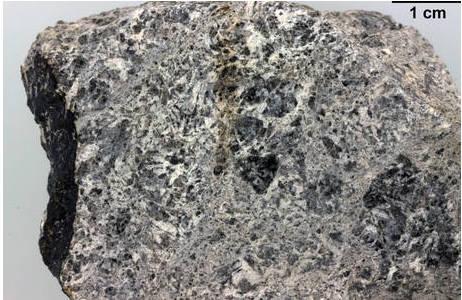 Detailaufnahme des Eukriten Jonzac (Inventarnr: A419), in dem die typische graue Gesteinsmatrix, hauptsächlich zusammengesetzt aus Feldspat (in hellgrau) und Pyroxen (in dunkleren Grautönen) gut erkennbar ist. In den Zwickeln dieser beiden gesteinsbildenden Minerale befinden sich weitere akzessorische Minerale, wie z.B. Sulfide, Oxide und auch Zirkon, welcher u.a. zur Altersdatierung genutzt werden kann; Foto: NHM Wien