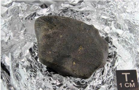 Steinmeteorit Saricicek; Foto: NHM Wien, L. Ferrière
