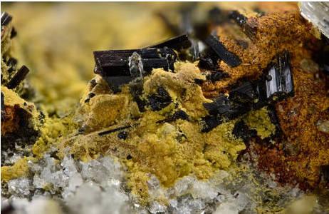 Humboldtin als gelbe, feinkristalline Krusten in Vergesellschaftung mit schwarzen Turmalin-Prismen.  Bildbreite 7 mm; Foto: H. Schillhammer, NHM Wien