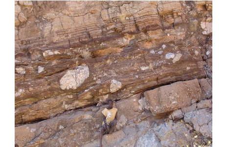 Ein geschichtetes, hellbräunliches Kappenkarbonat (oberer Fotorand) überlagert unmittelbar einen durch große helle Gesteinseinschlüsse charakterisierten Diamiktit (Gletschersediment). Marinoische Eiszeit (650-635 Millionen Jahre Jahre), Slope Facies, Otavi Berge, Namibia; Foto: Fritz Popp