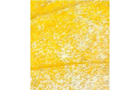 Abb. 5: Hypoleria alema karschi, Peru, Schuppen des gelben Vorderflügelareals; Foto: M. Lödl, NHM Wien