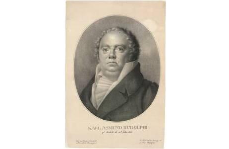Technik: Lithografie, H. 46,3cm x 31,2cm, Wien, 1810 – 1827