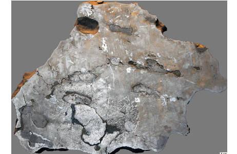 Polierter Anschnitt des Canyon Diablo Eisenmeteoriten (Inventar: G8357), welcher beim Einschlag vor ca. 50.000 Jahren den Barringer-Meteoriten-Krater in Arizona (USA) mit einem Durchmesser von 1,19 km gebildet hat. In dem Anschnitt sind sowohl die Widmannstättenschen Figuren der Eisen-Nickel-Matrix, als auch verschiedene metallisch glänzende Mineraleinschlüsse wie Schreibersit, Troilit, Chromit und Cohenit zu sehen.; Foto: NHM Wien