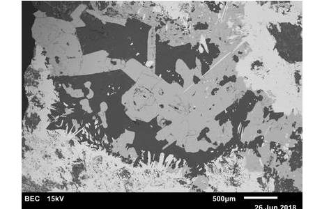 Hochaufgelöste Rasterelektronenmikroskop-Aufnahme eines polierten Erzanschliffs von der Lojane Antimon-Arsen-Chrom-Mine (Mazedonien): Realgar-Kristalle (hellgrau), Antimonit (hell), Quarz und Dolomit (beide dunkel); Foto: U. Kolitsch, NHM Wien