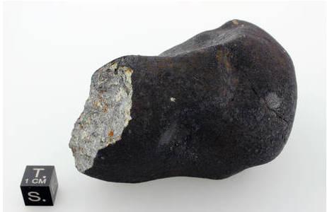 Handgroßes Stück des Chelyabinsk Meteoriten, welches von einer frischen, schwarz glänzenden Schmelzkruste ummantelt ist. Das hellgraue Gestein des Meteoriten besteht vor allem aus den Silikaten Olivin, Pyroxen und Plagioklas (ein Feldspat-Vertreter) sowie metallischem Eisen. Als Nebengemengteile kommen neben Sulfiden und verschiedenen Oxiden auch Cl-Apatit und Merrillit vor.; Foto: NHM Wien