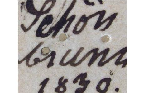 Fundortetikett von Reticulitermes flavipes; Foto: H. Bruckner, NHM Wien