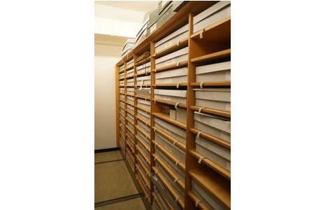Sonderdepot:  Kompaktussystem in denen sowohl Bilder als auch Fotografien aufbewahrt werden. Die Schachteln sind Säurefrei und ungepuffert.; Foto: NHM Wien, Archiv für Wissenschaftsgeschichte
