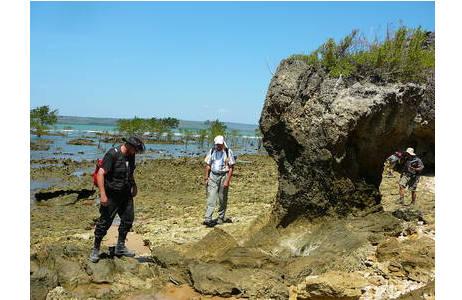 Auf der Suche nach fossilen Riffen in der Bucht von Lindi in Tansania; Foto: NHM Wien