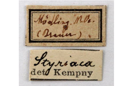 Etiketten des Exemplars