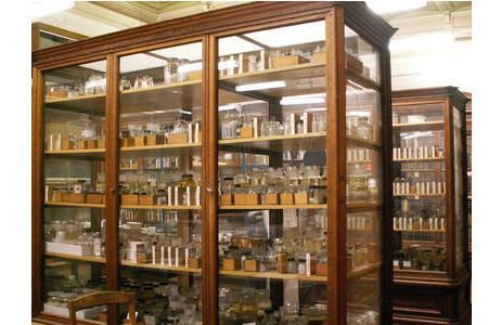 Kasten/Vitrine in der wissenschaftlichen Sammlung der Spinnentiere; Foto: C. Hörweg, NHM Wien