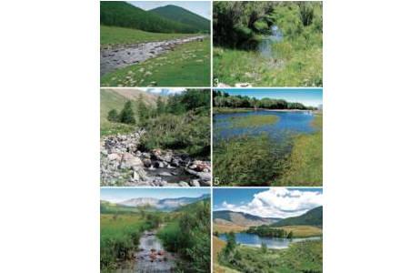 Schwimmkäferbiotope im nord-zentralen Teil der Mongolei. Fotos von A.E.Z. Short; Foto: aus Shaverdo, Short & Davaadorj 2008.
