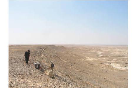 Geländearbeiten in der Wüste des Sultanats Oman; Foto: NHM Wien